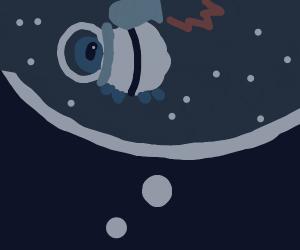 Dreaming of sheep transversing spacetime