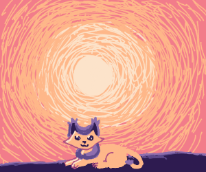 cat by the sun