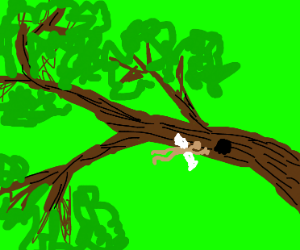 Tiny dude flys thru hole in tree branch