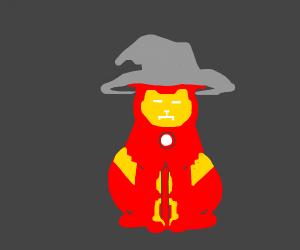 Iron Man cat wizard