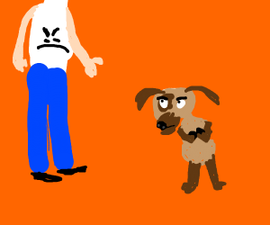 Doggo is suspicious of you