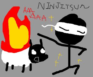 Ninja setting a sheep on fire
