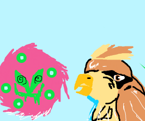 Pidgey & Spiritomb