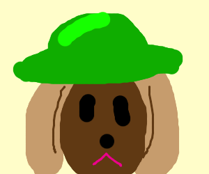 Brown dog head with a green hat