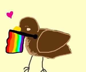 Rainbow flag bird