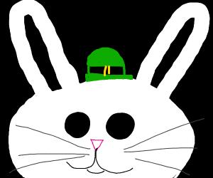 Saint patricks day bunny