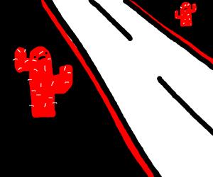 A cactus road