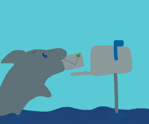 Dolphin delivers mail