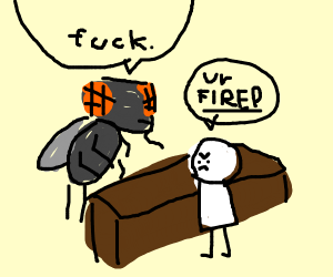 A fly is fired