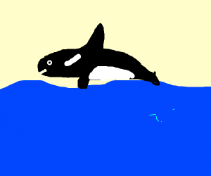 Happy whale jumping out of the water