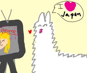 a llama who is a weeaboo