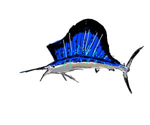 Fish pointy body
