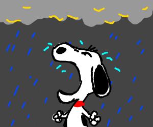 A Really really REALLY sad pupper.
