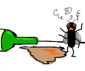 Drunk housefly