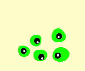 five green eyes just laying there