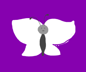 White butterfly is sad