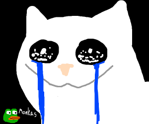 that crying cat meme