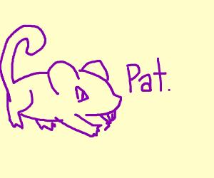pattata