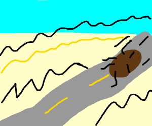 Hairy Ball rolls down a road