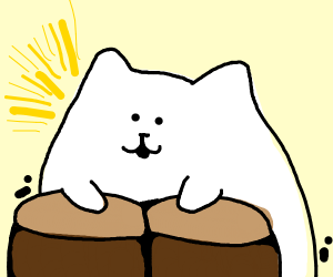 Bongo cat shocked 2 get 2018 Best Meme award