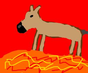 Mule on Mars