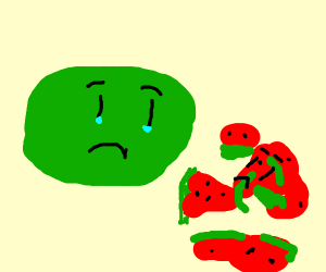 Watermelon mourns the loss of his friend