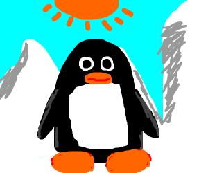 A penguin.
