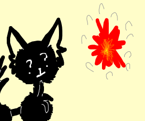 dog confused by explosion
