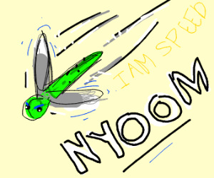 dragon fly goes f a s t