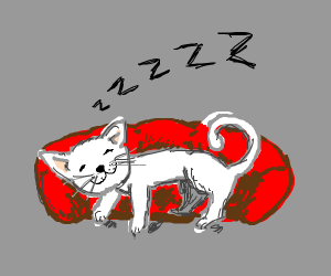 Cat sleeping peacefully in red bed
