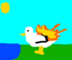 A Duck that is on Fire