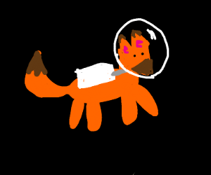 Fox in space