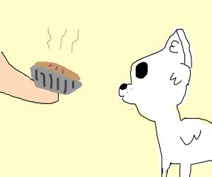 man gives doggo a slice of pie