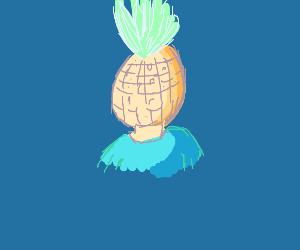 A guy whos head looks like pineapple