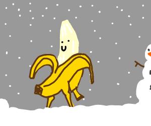 banana guy in winter