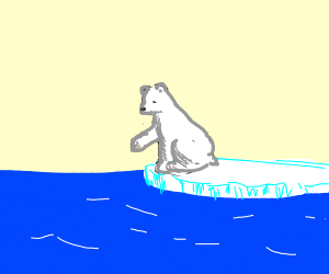 A polar bear at the edge of the ice