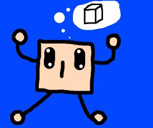 a square man wants blocks