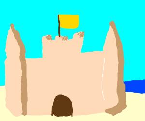 magnificent sandcastle