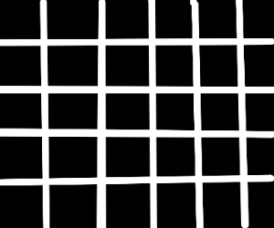 grey lines and dots illusion