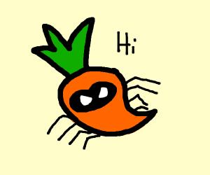 spidercarrot