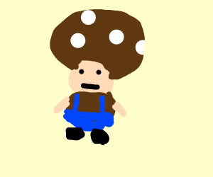 Chocolate Toad