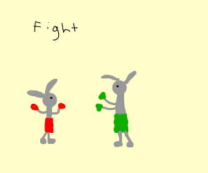 A rabbit fighting a slightly bigger rabbit