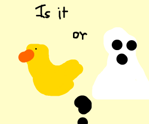 duck or ghost?