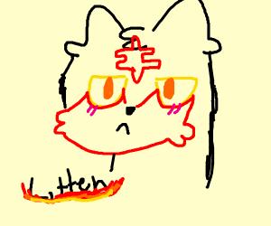 Litten