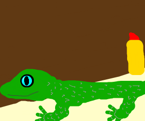 Lipstick wearing lizard getting a haircut