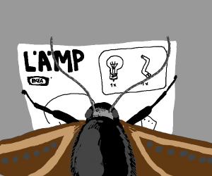 Moth trying to build a lamp.