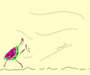 sad peeled watermelon gets blown away