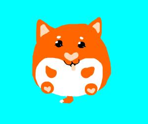 Very round doggo