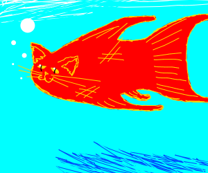"A ""Catfish"" (fish with a cat's face)"