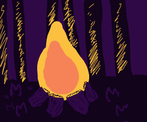 campfire in the woods at night